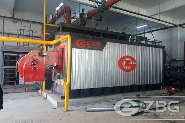 4t biomass fired steam boiler for poultry feed plant